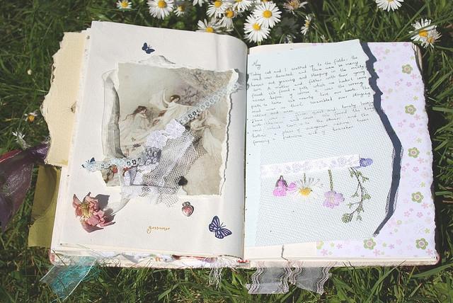 creative-daisy-diary-field-diary-flowers-Favim.com-144417